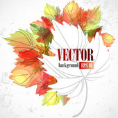 Autumn leaves. — Stock Vector