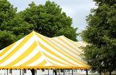 Outdoor tent — Stock Photo