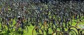 Bikes at rest — Stock Photo