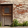 Door in the wall — Stock Photo