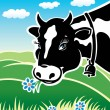 Kind cow on a meadow — Stock Vector