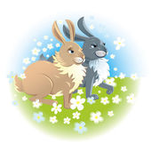 Two happy rabbits — Stock Vector