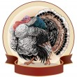 Stock Vector: Graphical turkey-cock
