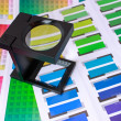 Stock Photo: Magnifying Glass on Color Swatches Series