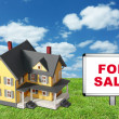 Stock Photo: Model house on green grass with for sale sign