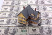 Miniature house on one hundred dollar banknotes — Stock Photo