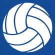 Stock Vector: Volleyball vector icon