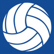 Volleyball vector icon — Stock Vector