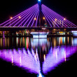 Song Han Bridge with Reflection in Water — Stock Photo #11319782