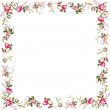 Frame with red flowers — Stock Photo #10850253