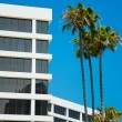 Stock Photo: Palm trees and modern architecture