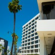 Palm trees and modern architecture — Stock Photo #11295619