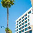 Palm trees and modern architecture — Stock Photo #11295625