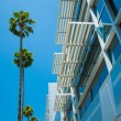 Palm trees and modern architecture - Stok fotoğraf