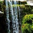 Stock Photo: Waterfall in Zoo of Los Angeles