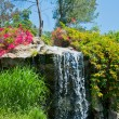 Stock Photo: Waterfall and duck in Zoo of Los Angeles