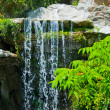 Waterfall in Zoo of Los Angeles - Stock Photo