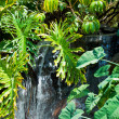 Waterfall in Zoo of Los Angeles — Stock Photo