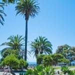 Exotic park in Santa Monica — Stock Photo