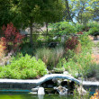 Garden with pond in asian style — Stock Photo #11646837