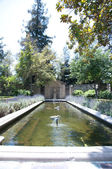 Trädgård med damm — Stockfoto