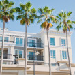 White residential building and palm tree — Stock Photo