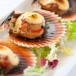 Macro queen scallop close up. — Stock Photo