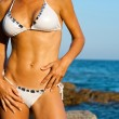 Attractive female body in bikini. — Stock Photo