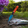 Garden tools — Stock Photo #10735855