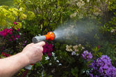 Garden hose — Stock Photo