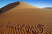 Detail of Dune 45 — Stock Photo