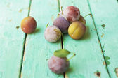 Group of plums on rustic turquose surface — Stock Photo