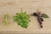 Twigs of rosemary, basil, parsley on a rustic wooden surfase — Stock Photo