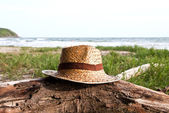 Straw hat over the timber on the beach. — Stock Photo
