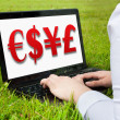 Stock Photo: Woman working outdoors on laptop showing currency 3D