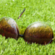 Sunglasses on artifical grass — Stock Photo