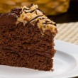Stock Photo: GermChocolate Fudge Cake
