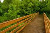 Ponte di legno — Foto Stock