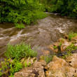 Small Creek in Hidden Valley Park in Savage Minnesota — Stock Photo #12306720