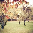 Royalty-Free Stock Photo: Vintage Autumn