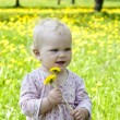 Stock Photo: Baby on nature of grass