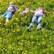 Family lies on the grass — Stock Photo #11996522