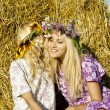Girls around haystacks and laugh — Stock Photo #11996682