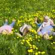 Foto Stock: Happy family is in dandelions