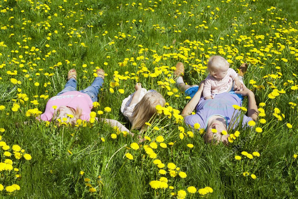 Happy family is in the dandelions in the grass — Stock Photo #11996714