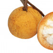 Fruit : The santol — Stock Photo