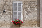 Window with white shutters — Stock Photo