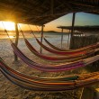 Hammocks — Stock Photo #12152309