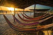 Hammocks — Stock Photo