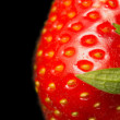 Macro view of fresh strawberry on a black background. - Foto de Stock